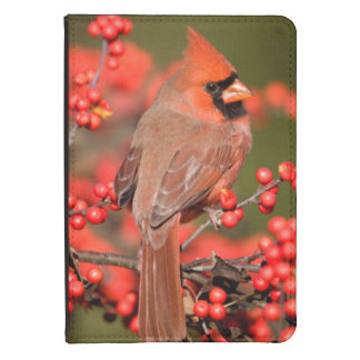Northern Cardinal on Common Winterberry Kindle Touch Cover
