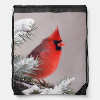 Northern Cardinal Perched In A Tree Drawstring Bag