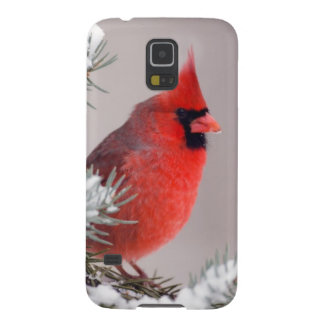 Northern Cardinal Perched In A Tree Galaxy S5 Cover