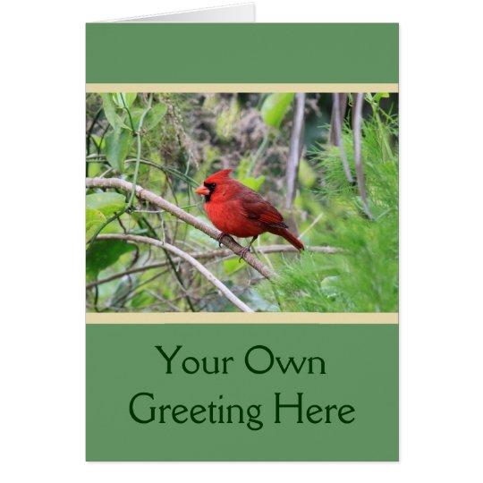 Northern Cardinal Photo Card