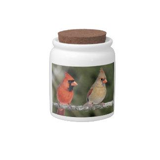 Northern Cardinal Photograph Candy Jar