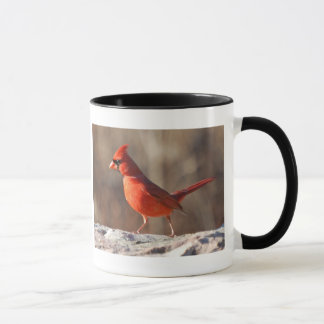 Northern Cardinal picture and information - mug