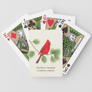 Northern Cardinal Playing Cards Bicycle Playing Cards