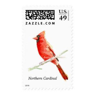 Northern Cardinal postage