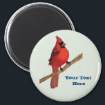 """Northern Cardinal Red Bird Magnet<br><div class=""""desc"""">The northern cardinal is one of the most famous birds in the country. They are beautiful and red with black masks. I used to love to watch them eat at my bird feeder. The northern Cardinal is the state bird of 7 states, which means it is the most popular choice...</div>"""