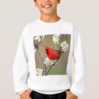 Northern Cardinal Sweatshirt