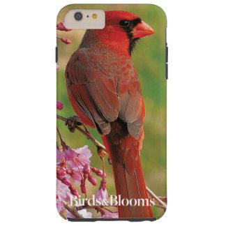 Northern Cardinal Tough iPhone 6 Plus Case
