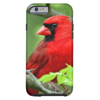 Northern cardinals iPhone 6 case