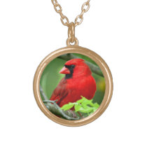 Northern cardinals gold finish necklace