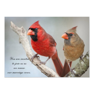 Northern Cardinals/Renewal of Marriage Vows Card