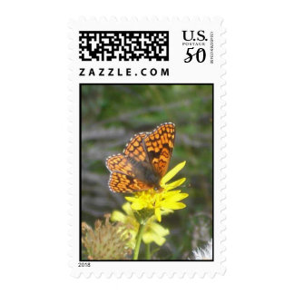 Northern Checkerspot Stamp