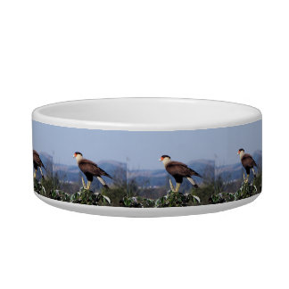 Northern Crested Caracara Bird of Prey on tree Bowl