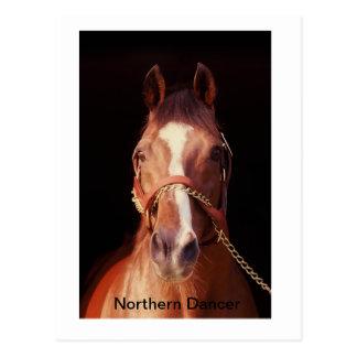 Northern Dancer World s Greatest Stallion Post Card