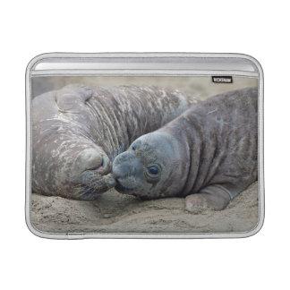 Northern Elephant Seal Pups MacBook Air Sleeve