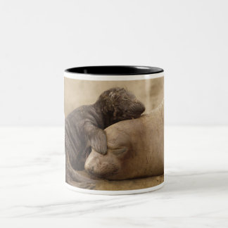 Northern Elephant Seal with Pup Coffee Mugs