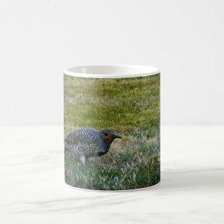 Northern Flicker #1 Coffee Mug