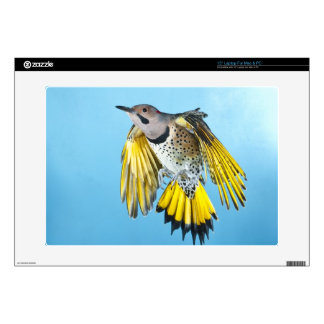 """Northern Flicker Flying 2 Decals For 15"""" Laptops"""