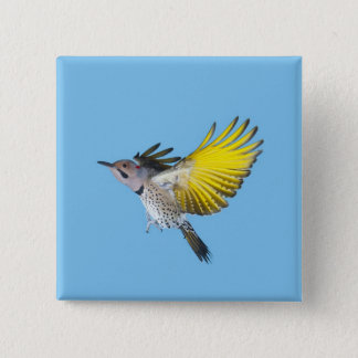 Northern Flicker Flying Button