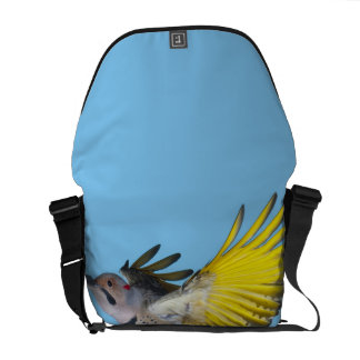 Northern Flicker Flying Courier Bag