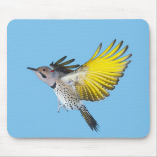 Northern Flicker Flying Mouse Pad