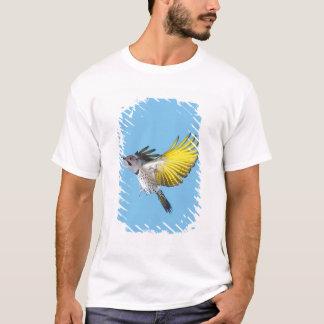 Northern Flicker Flying T-Shirt
