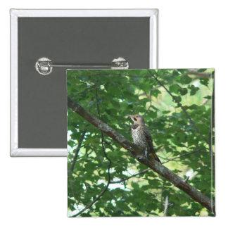 Northern Flicker in Tree Button
