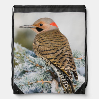 Northern Flicker male Drawstring Bag