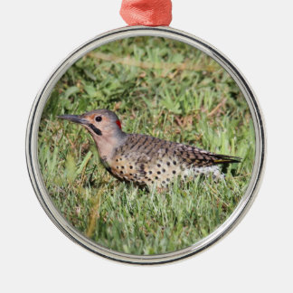 Northern Flicker Metal Ornament