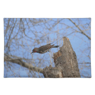 Northern Flicker Take Off Placemat