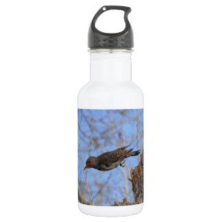 Northern Flicker Take Off Stainless Steel Water Bottle