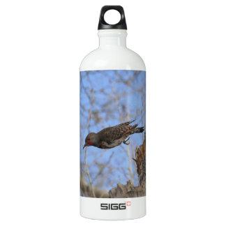 Northern Flicker Take Off Water Bottle
