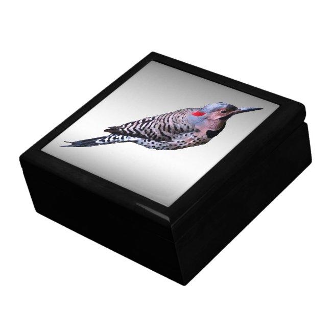 Northern Flicker Woodpecker Bird Gift Box
