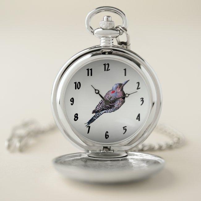 Northern Flicker Woodpecker Bird Pocket Watch