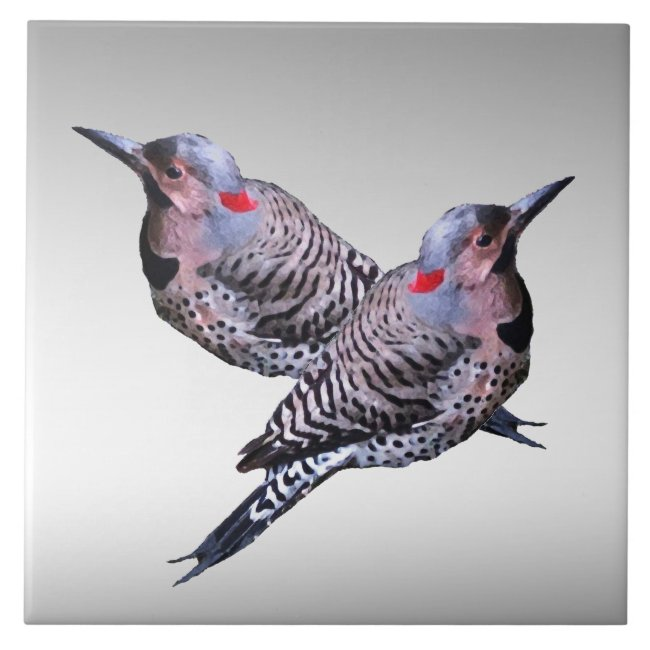 Northern Flicker Woodpecker Birds Ceramic Tile