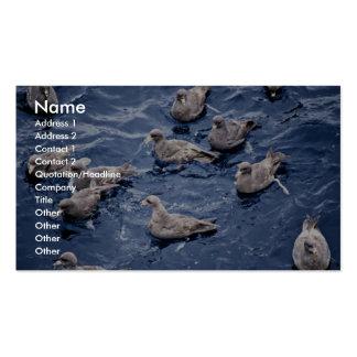 Northern Fulmar Flock,1987 Business Card
