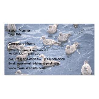 Northern Fulmar Flock,1987 Business Card Template