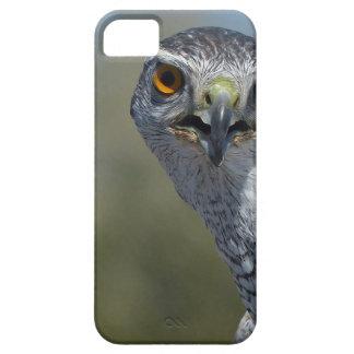 Northern Gohawk Close Up iPhone SE/5/5s Case