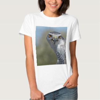 Northern Gohawk Close Up Shirt