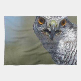 Northern Gohawk Close Up Towel