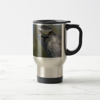 Northern Gohawk Close Up Travel Mug