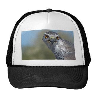 Northern Gohawk Close Up Trucker Hat