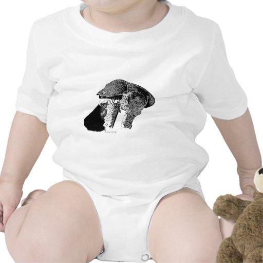 Northern Goshawk Baby Bodysuits