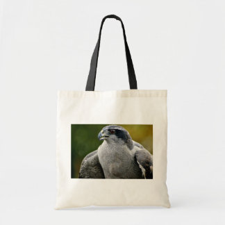 Northern Goshawk Bags