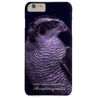 Northern Goshawk Barely There iPhone 6 Plus Case