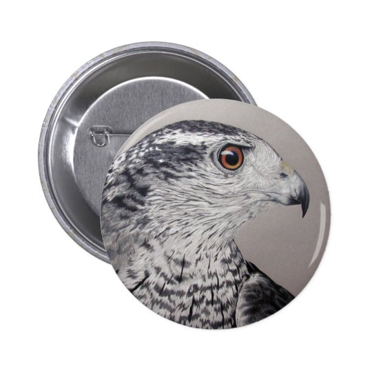Northern Goshawk Button