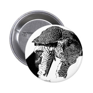 Northern Goshawk Buttons