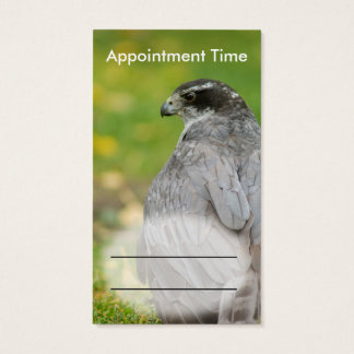 Northern Goshawk customizable business suite Business Card