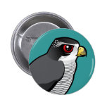 Northern Goshawk Pinback Button