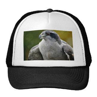 Northern Goshawk Trucker Hat