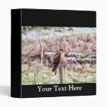 Northern Harrier Hawk on Fence Vinyl Binder